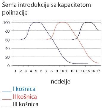 proces polinacije