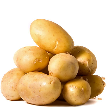 navodnjavanje krompira